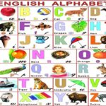 Abcd alphabet in hindi for Kids