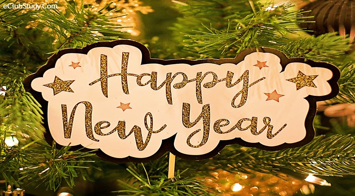 Happy New Year Essay