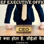 CEO Kya Hota Hai CEO Kaise Bane How To Become CEO In Hindi